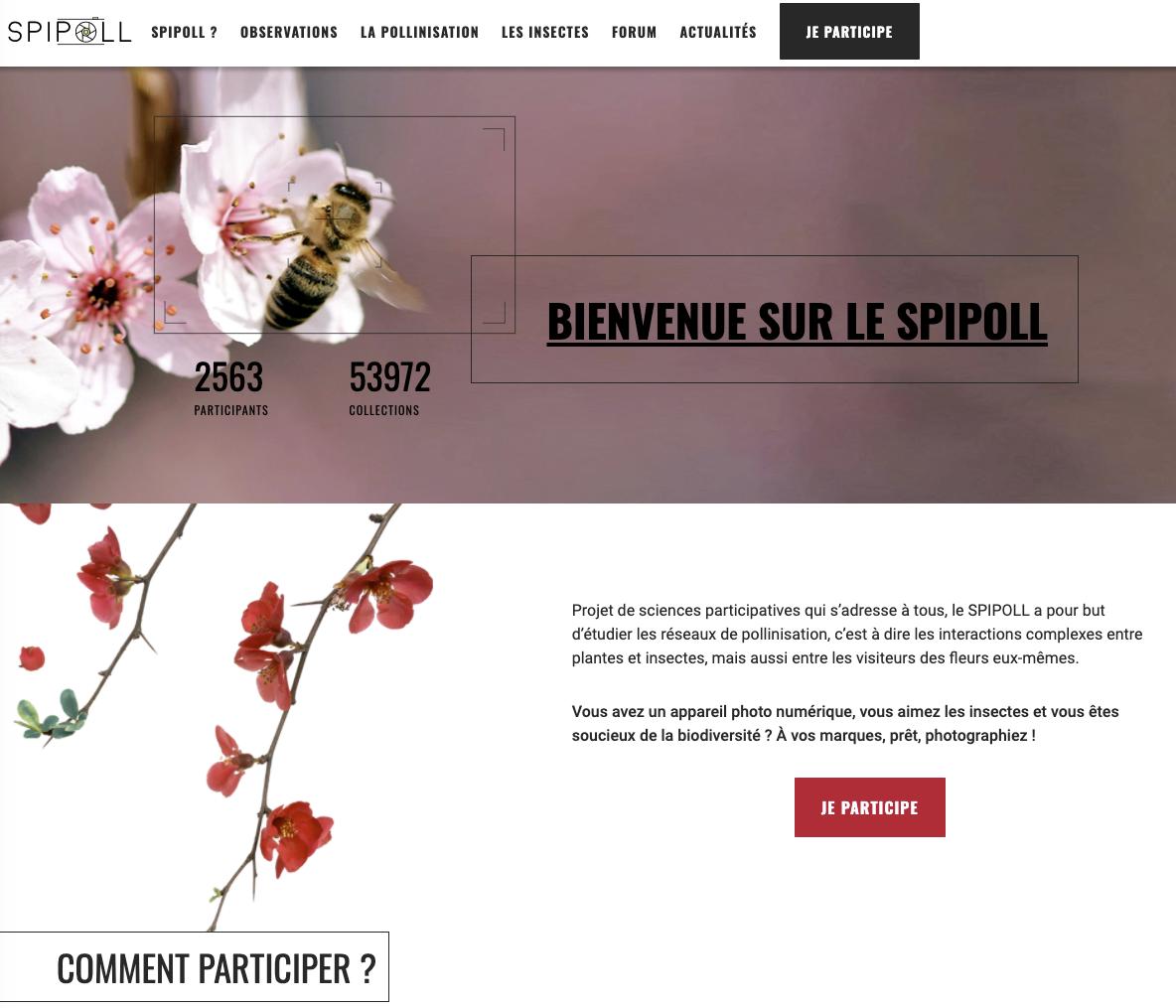 Image : copie d'écran de la page d'accueil du Spipoll - photo : Janmar